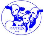 Pantex S.p.A